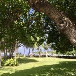 ハワイ島に行ってきました!2泊3日の過ごし方、3日目。