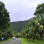 ハワイ-カネオヘの植物園「ホオマルヒア・ボタニカル・ガーデン」で癒されてきました!